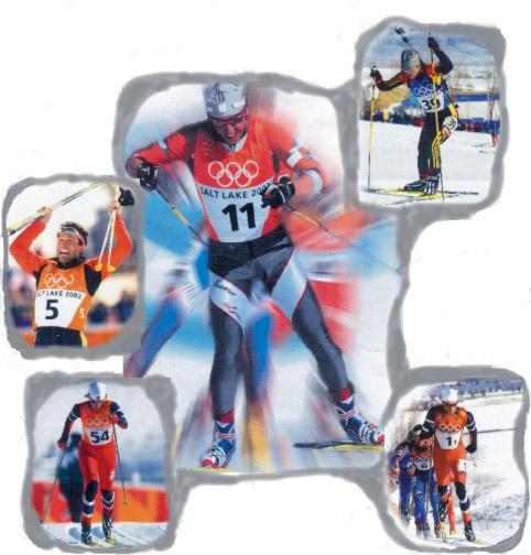 Skilanglauf-Rennen - ein Sport mit vielen Facetten